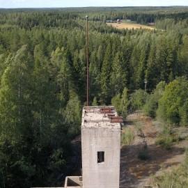 Metsämonttu_3